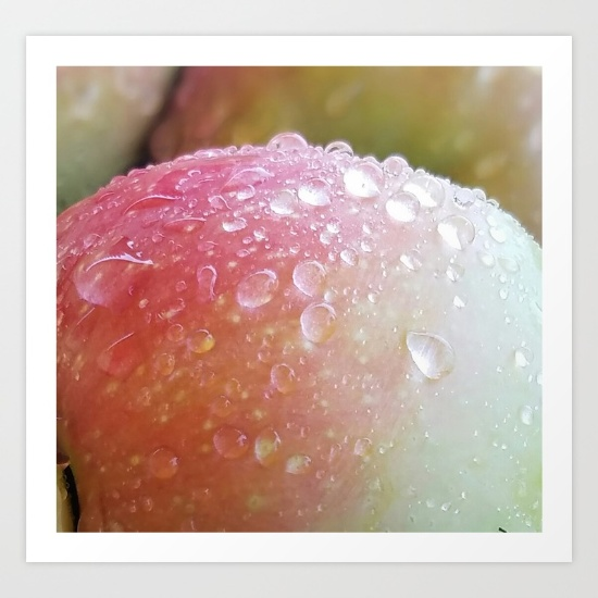 apples-after-the-rain-prints