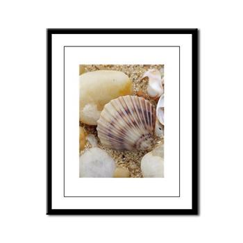 shells-print